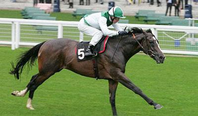 معروف ترين اسب هایي كه در ايران هستند