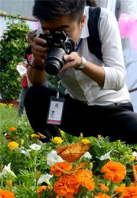 تصاویری از پروانههای بسیار زیبا و قشنگ