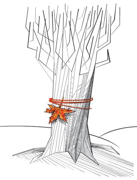 عکس و کاریکاتور با مضمون پاییز