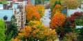 عکس هایی از زیباترین پاییز جهان