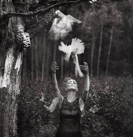 عکس های عاشقانه رویایی و خاص در جنگل و طبیعت