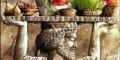 رسم و رسومات جشن باستانی نوروز در اورمزد روز