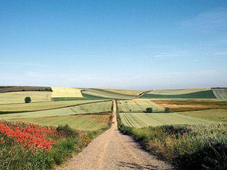 یک عکس بسیار زیبا و دیدنی از جاده فرانسیس اسپانیا