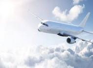 خلبان بدلیل خوشگل نبودن مهماندار هواپیما خشمگین شد