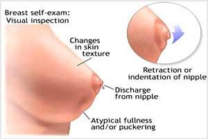 رازهای نهفته و جالب درباره نوک سینه (پستان) خانم ها