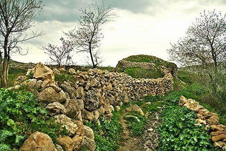 مناطق توریستی و گردشگری ریجاب در کرمانشاه (عکس)