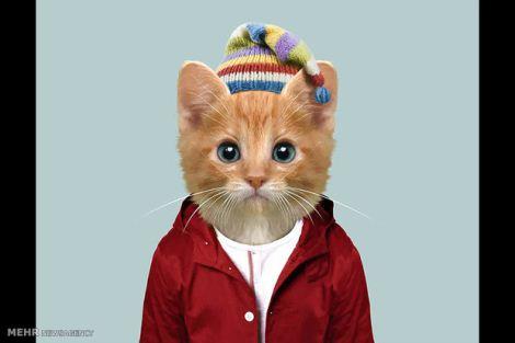 عکس دیدنی حیواناتی که مانکن لباس های زمستانی شدند