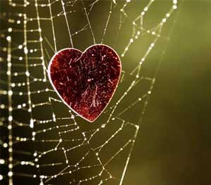 شعر با مسما و زیبای دلم را از سر راه نیاورده ام