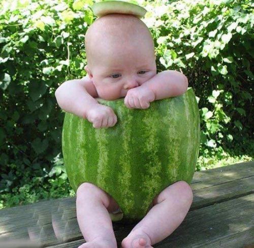 عکس های خیلی خنده دار با سوژه های بامزه مهر 95