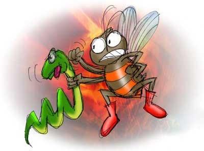 حکایت خواندنی نیش مار و زنبور