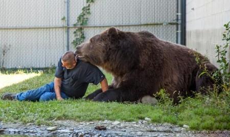 عکس های رابطه رمانتیک زوج آمریکایی با خرس