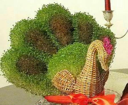 مدل سبزه به شکل طاووس برای سفره هفت سین