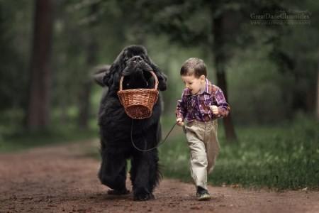 عکس های باحال از دوستی بچه ها با سگ های بزرگ خارجی