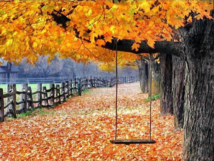 انشای پاییزی برای پایه دبستان