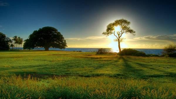 عکس های ناب و زیبا از طبیعت