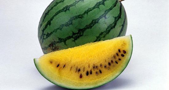 هندوانه زرد را بهتر بشناسید   فواید هندوانه آناناسی,علت زرد بودن هندوانه زرد