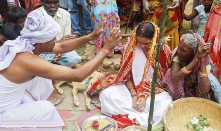ازدواج اجباری و دردآور دختر 9 ساله هندی با یک سگ برای شکستن طلسم