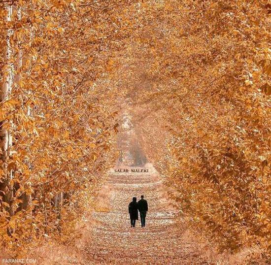 عکس های زیبا از فصل پائیز،فصل برگریزان + متن احساسی درباره پائیز