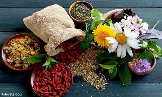 انواع مسکن های گیاهی و طبیعی موثر