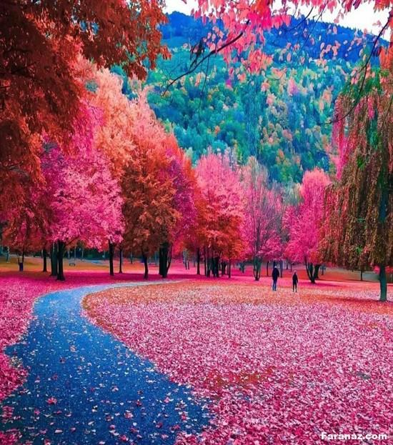 رویایی ترین و زیباترین عکس های طبیعت جهان